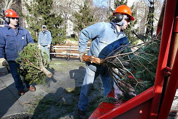 New York Mayor Bloomberg Kicks Off Mulchfest 2003