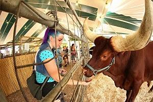 Great New York State Fair/MIKE OKONIEWSKI
